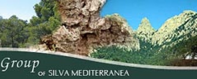 2nd Meeting of the Silva Mediterranea Working Group on Urban and peri-urban forestry (UPF)